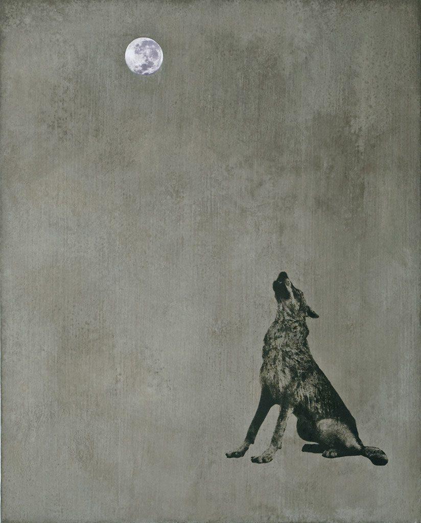 Nightmare oder Kojotes Mondaufgang
